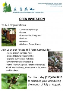 Summer Program Invitation